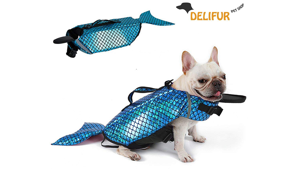Dog Swimsuits - merdoggo - a really happy dog showing off his shiny life-preserving swimsuit